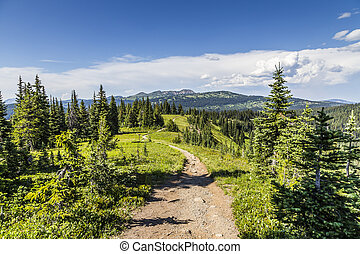 Trail view in Mountains
