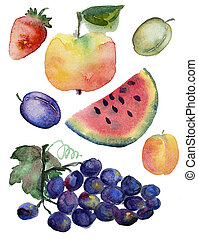Fruit set drawn watercolor blots and stains with a spray :...