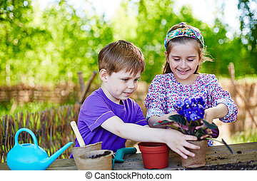 Kids gardening - Cute friends replanting African violets...