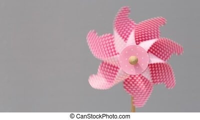 toy pinwheel - Colorful toy pinwheel on gray background