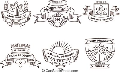 Retro farm fresh labels, badges and design elements