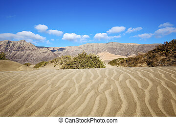 abstract yellow dune beach hil and mountain in the lanzarote...
