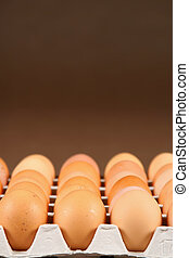 eggs in tray - 24 eggs in tray over brown background