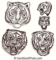 Hand drawn tigers set in engraved style.eps - Hand drawn...