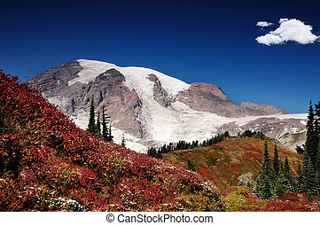 Autumn in Mt Rainier - Mount Rainier with valleys covered...