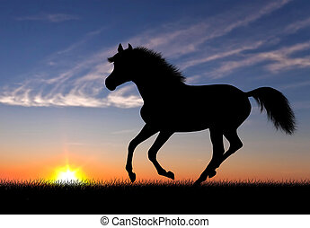 Running horse silhouette against beautiful sunset landscape