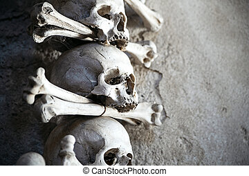 Human skeleton parts lie still and quiet - Skull closeup...