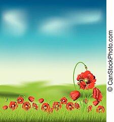 Poppy with Grass