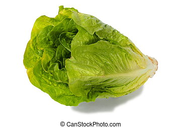 Romaine lettuce - Green romaine lettuce on white background
