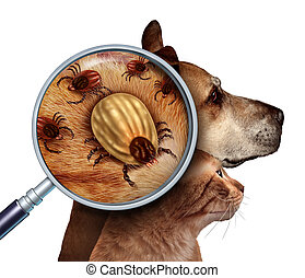 Pet Tick as a group of dog and cat ticks in the fur as a...