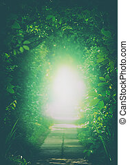 Teleport to another Universe. Tunnel In the Forest. Natural...