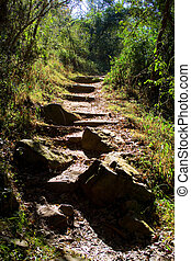 steep path - a steep muddy path in the mountains