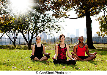 Yoga in Park - A group of people meditation in a city park