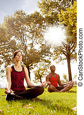 Meditation - A group of people meditation in the park -...