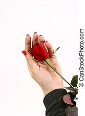 valentine\'s, jour