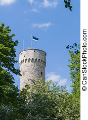 Tall Hermann - Toompea castle tower in Tallinn, capital of...