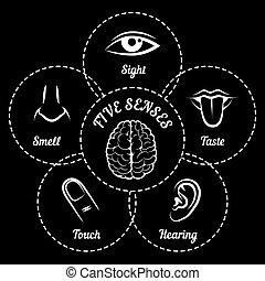 Five senses scheme Eye and nose, ear and taste, smell and...
