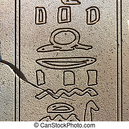 Egyptian Hieroglyphics - Close up of Egyptian Hieroglyphs...
