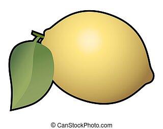 Lemon fruit isolated on white