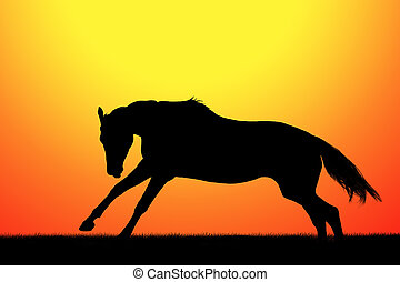 Silhouette of horse - Silhouette of galloping horse on...
