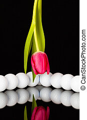 Red tulip and golf equipments