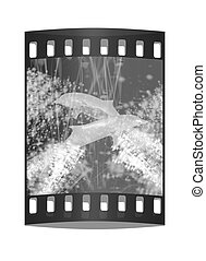 Golden Dolphin - a symbol of love and devotion in gold spray and stars. The film strip