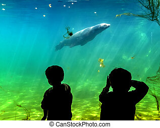 Silhouette of children on the background of a large aquarium