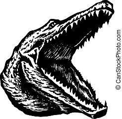 alligator, crocodile widely slack j - hand drawn, vector,...