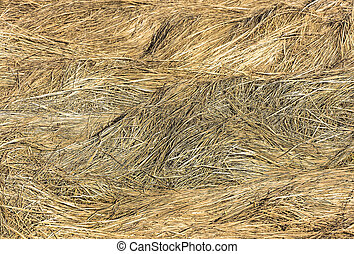 Texture of last years grass - Beautiful texture Packed last...