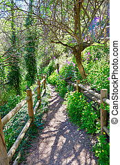 Cuenca spring forest in Canete wooden fence by the river