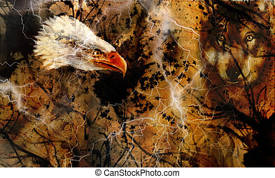 Wolf and eagle color painting, feathers background,...