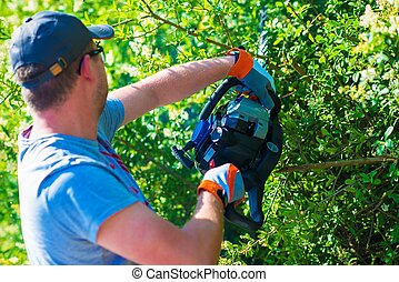 Men Trimming Hedge Using Powerful Gasoline Hedge Trimmer.