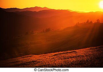 Summer Sunset Landscape. Northern California Scenic View.