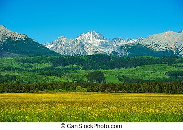 Tatra Mountains. Slovakia Side Tatra Mountains Summer...