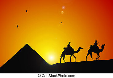 Cameleer - Abstract illustration of camel and cameleer