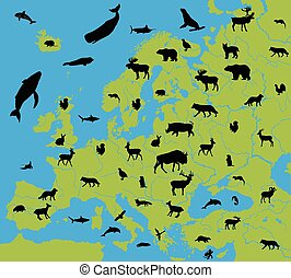 Animals on the map of Europe and their habitats