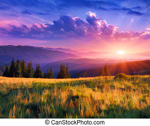 Beautiful summer sunrise in the mountains - Digital artwork...