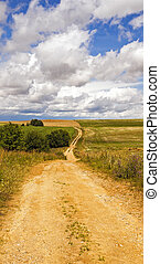 the rural road -