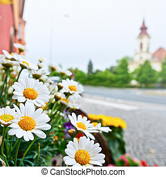flowers in front of florist's shop