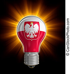 Light bulb with Polish flag Image with clipping path