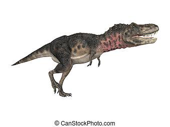 Dinosaur Tarbosaurus - 3D digital render of a dinosaur...