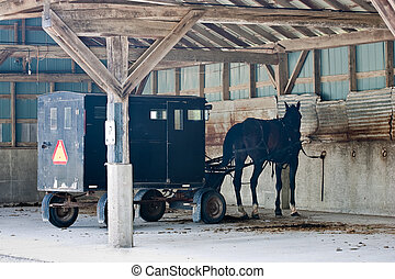 Menonite carriage parking - A menonite carriage with horse...