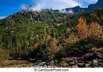 Tatra Mountains in the Pines