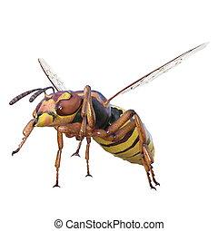 hornet - image of hornet