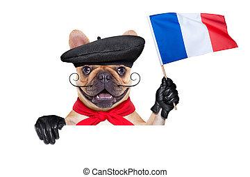 perro, francés, vino