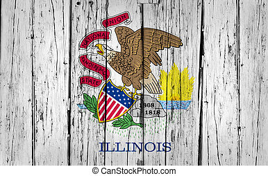 Illinois State Flag Grunge Background