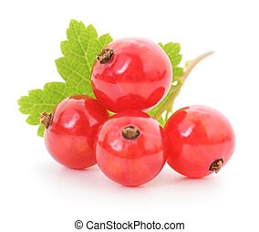 Four red currants with leaf on a white background