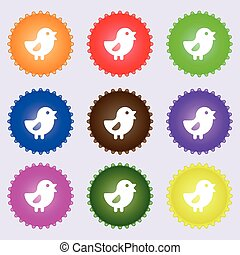 chicken, Bird icon sign. A set of nine different colored...