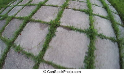 Plates road with sprouted grass - In Spring Park footpath an...