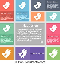 chicken, Bird icon sign Set of multicolored buttons with...